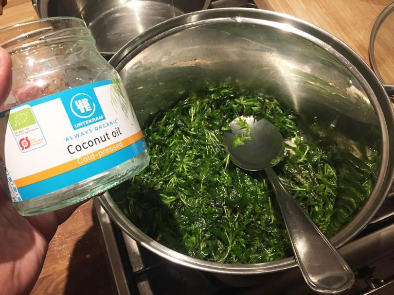 Sådan laver du kokosolie med frisk cannabis