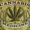 Medicinering med cannabis