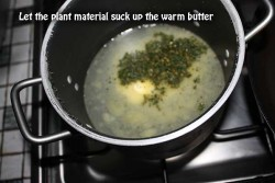 Add the plant material to the hot butter